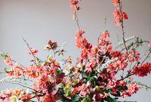 Flower Arrangements / Floral Design