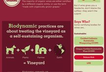 Bio Wine // About Organic Wine / This board is dedicated to give more information on organic, biodynamic and natural wines.