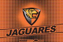jaguares t-shirt / by Pamela Felicié