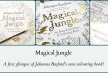 JB Jungle