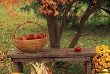 Össz/autumn/fall