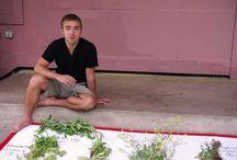 ätbara växter ur naturen
