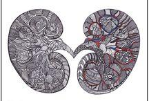 kidney tattoos