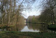 Wandelen in West-Salland / West-Salland is een mooi wandelgebied dat zich uitstrekt van Deventer tot Zwolle. Mooie landgoederen en fraaie bossen doen je de sleur van alledag vergeten