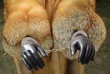 chainedfur