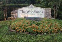 The Woodlands Resort #travel