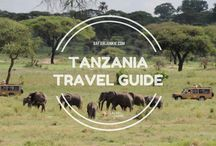 Quick Guides Africa Travel