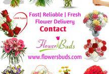http://www.flowersbuds.com/blog/hyderabad-flower-shop/ / Best Gift for Special Occation at Hyderabad Flower Shop  http://www.flowersbuds.com/blog/hyderabad-flower-shop/