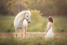 Horse mini session