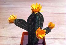 cactus papier