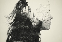 Ambivalent Collage / by Kim Huynh