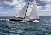 sailing / by Joanna Ossowska