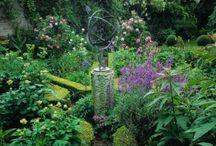 My Secret Garden / by Sarah Roth