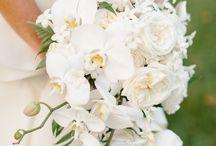 Белая свадьба. White wedding