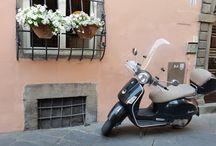 Toscana +1 / Bologna - Firenze - Pisa - Lucca - Calambrone