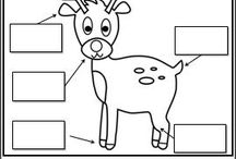 reindeer worksheet