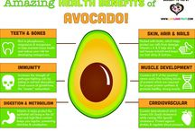 Avocados / Anything About Avocados