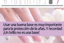 TIPS / Consejos y trucos de los productos de Belleza Thuya Professional