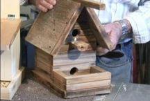 Bird house/feeder / by Bobbie Sumpter