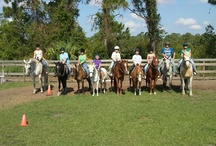 Fun Days at Summer Camp / Summer Camp starts this year on June 4th.  Just a glimpse of the fun and games with horses and kids!