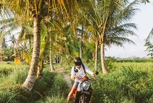 Baliii