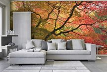 Cool Feature Walls / Fab wall features, seasonal, bright making a room come alive.