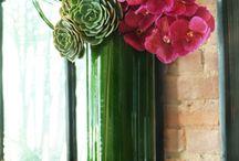 Flower ideas / by Teresa Carl Byrne