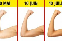 Exercices muscu