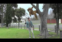 Funny Life Insurance Ads / Great Life Insurance Ads! http://www.miplan.com.au/mi-safe-plan/unexpected-death