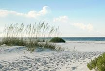Florida home of beautiful sky's white sand and sunshine / by Patty Trenton