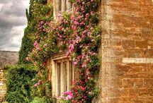 Φανταστικοί τοίχοι λουλουδιών