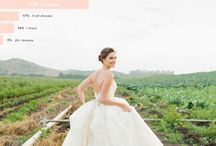 wedding - The Beautiful Day