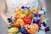 bouquet / by Marianne Dove