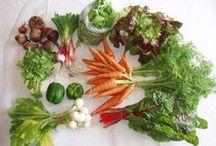 Worden Farm Membership / CSA, community supported agriculture, farm membership, organic vegetables