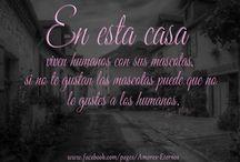 Amores Eternos 11 / Frases lindas