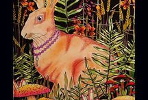 Daydreams Summernights Magical Dawn Coloring Book Hanna Karlzon