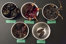 Chillies used in Mole / The chillies used in some of the Moles of Oaxaca and Mexico. Pictures and flavour descriptors of said Chillies. Inspiration for Mole inspired recipes.