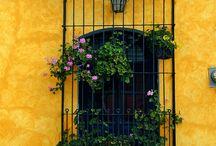 finestre con fiori