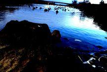 水面 Water surface