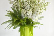 Sim's favourite flowers