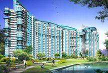 Pivotal Paradise / Pivotal Paradise sector 62 gurgaon http://hudaaffordablegurgaon.com/category/affordable-housing-gurgaon/pivotal-paradise-sector-62/ CAll 9650771333