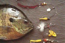 Balık Tutkusu