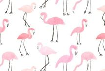 flamingo party idea