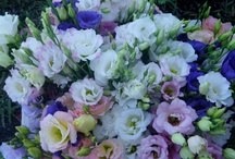Flowers / by Marina {Concept Events Planning}