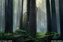 Pete's Dragon (2016) / HD wallpapers from Pete's Dragon 2016 live-action movie :]
