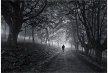 paisajes blanco y negro