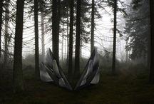Light in the Forest / Praca semestralna