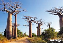 Madagascar / Alla scoperta di una destinazione straordinaria chiamata Madagascar!