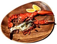 Seafood recipes — Shellfish / The local catch — including Northern shrimp, lobster, crab, scallops, mussels, clams, and squid!