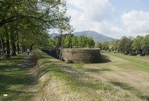 Lucca / Lucca ligt in Toscane en is een erg leuk stadje. Het is relatief rustig maar zeker de moeite waard. Het centrum is zo goed als autovrij. Lucca is omringd door een 4 km lange stadsmuur hier kan je wandelen of fietsen. In lucca vindt je Torre Guinigi dit is een toren waar bovenop bomen groeien heel apart en zeker een bezoek waard voor het geweldige uitzicht over de stad  #Lucca #Apolloathome #reizen #stedentrip